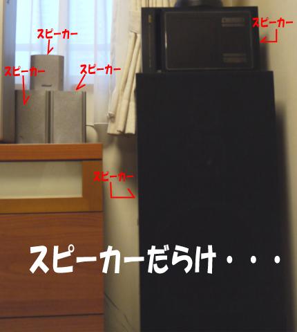 10_20090728220315.jpg