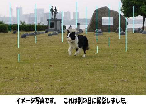 10_20090801155144.jpg