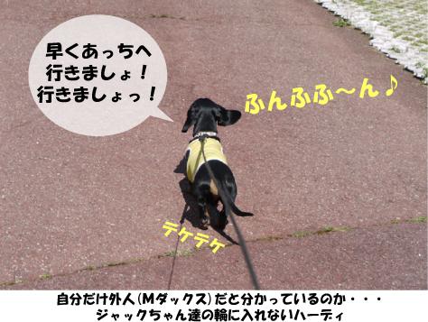 10_20090816151013.jpg