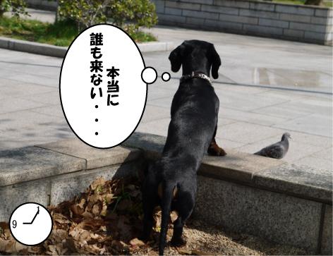 11_20090427135040.jpg