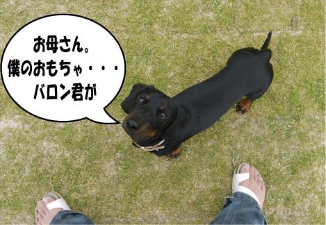 11_20090621153014.jpg