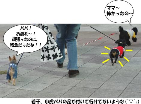 11_20091014021934.jpg