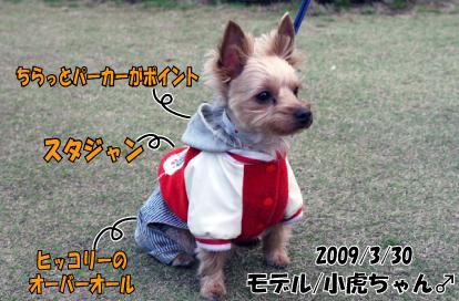12_20090401115950.jpg