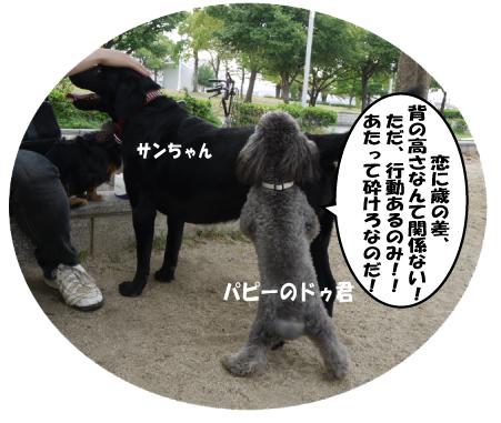 13_20090621154143.jpg