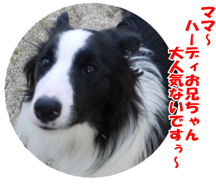 14_20090322033515.jpg