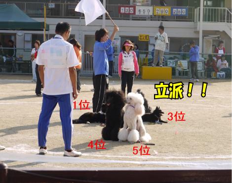 14_20091112181420.jpg