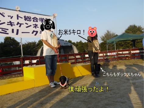 15_20091112224023.jpg