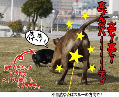 16_20090409155952.jpg