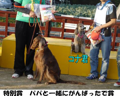 16_20091112232007.jpg