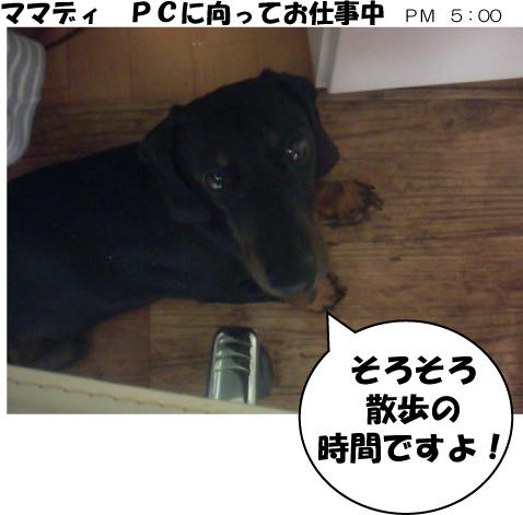 19_20090703022259.jpg