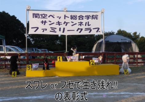 19_20091112181729.jpg