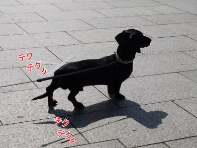 1_20090307213032.jpg
