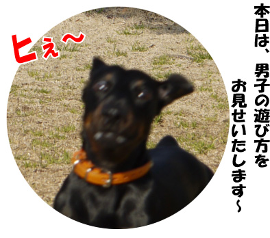 1_20090312004256.jpg