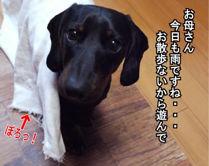 1_20090314214559.jpg