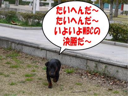 1_20090323223838.jpg