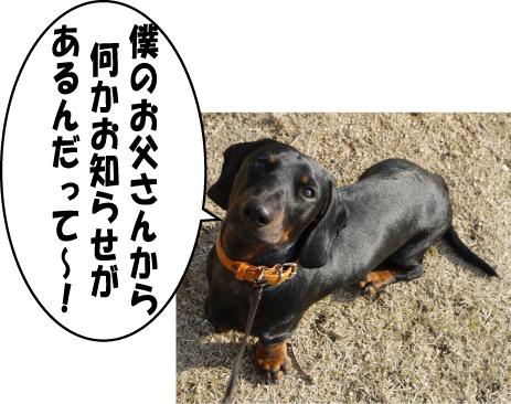 1_20090430213216.jpg