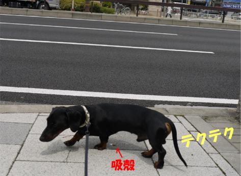 1_20090511010503.jpg