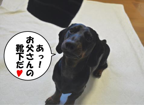 1_20090521224705.jpg
