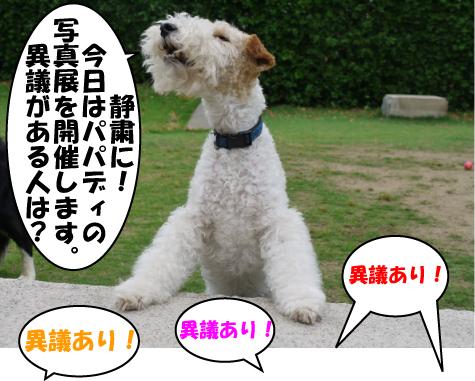 1_20090523223820.jpg
