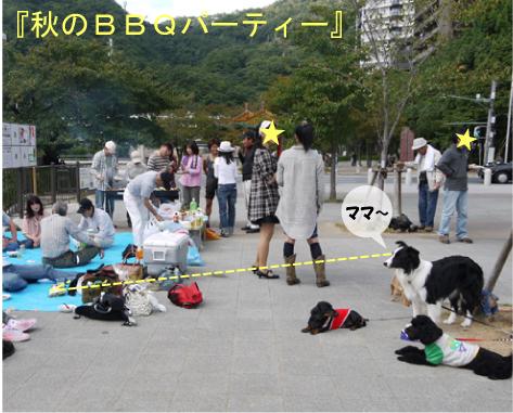 1_20091014001002.jpg