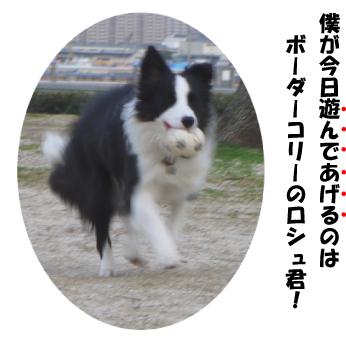 2_20090322024253.jpg