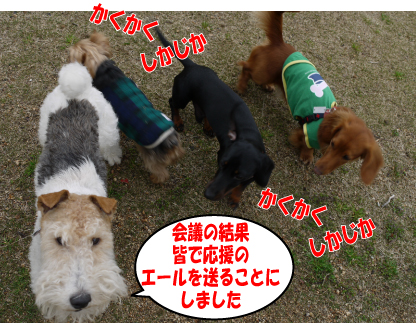 2_20090323224019.jpg