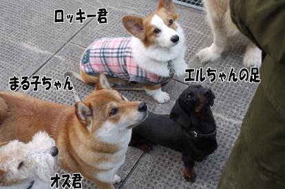 2_20090401104029.jpg