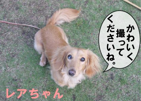 2_20090516194203.jpg