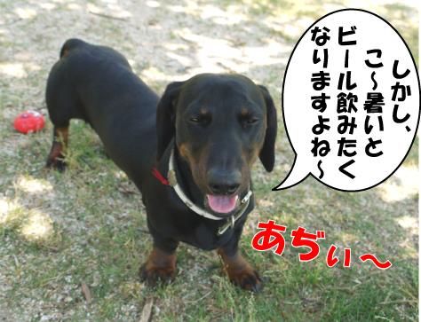 2_20090530153214.jpg