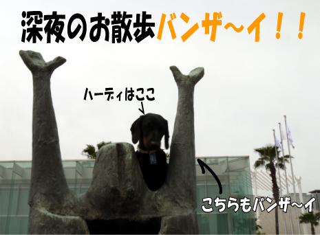 2_20090608162036.jpg