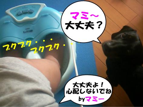 2_20090626000443.jpg