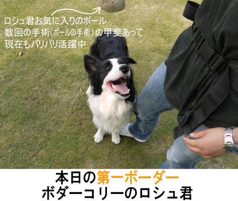 2_20090704140851.jpg