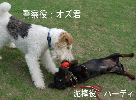 2_20090714135150.jpg