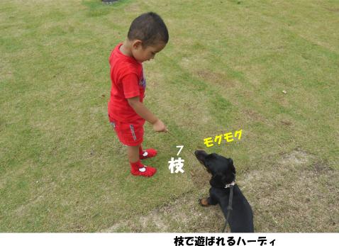 2_20090727194847.jpg
