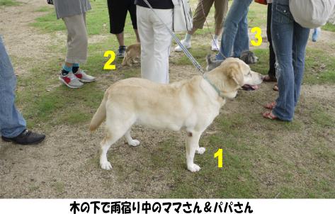 2_20090801155301.jpg