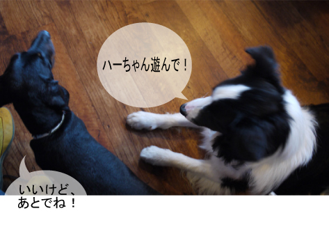 2_20091003013058.jpg