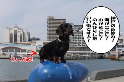 3_20090328221449.jpg