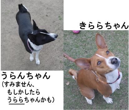 3_20090411214306.jpg