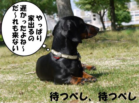 3_20090530153407.jpg