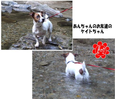 3_20090911165157.jpg