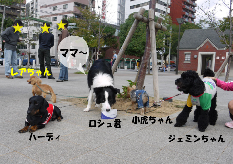 3_20091014001646.jpg