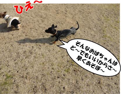 4_20090310124123.jpg