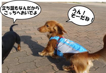 4_20090312004347.jpg
