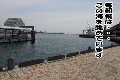4_20090328221546.jpg