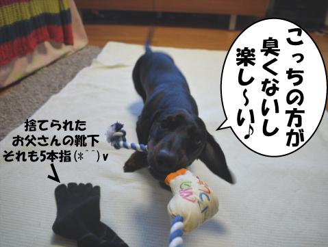 4_20090521230811.jpg