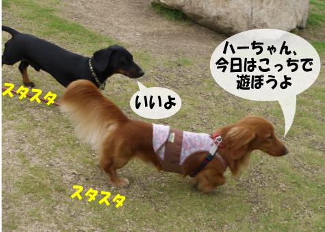4_20090604174730.jpg