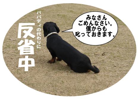4_20090608164858.jpg