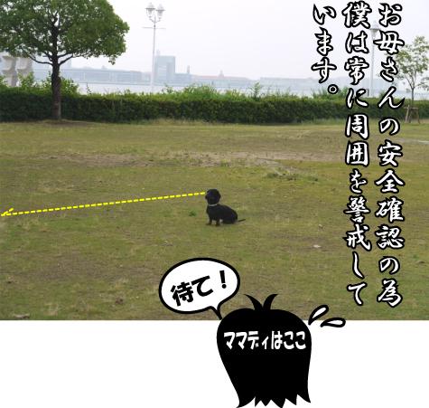 4_20090611190542.jpg