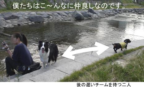 4_20091003013127.jpg