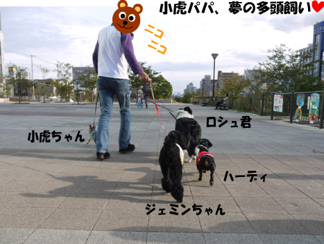 4_20091014002909.jpg